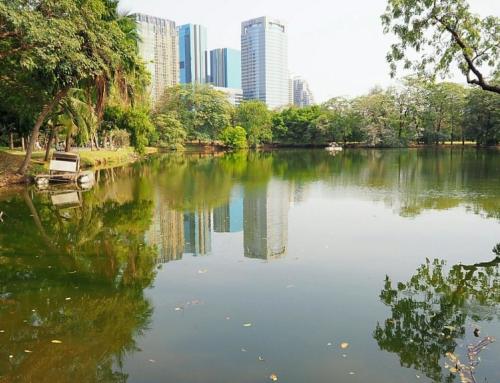 Wachirabenchatat Park Guide